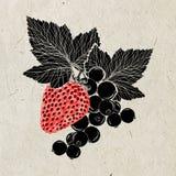 Fresa y una rama de la pasa con las hojas en el papel de arroz beige Ilustración Color negro y rojo Fotografía de archivo