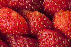 Fresas Fotografía de archivo
