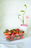 Fresas Foto de archivo libre de regalías