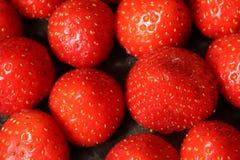 Fresas Imagenes de archivo