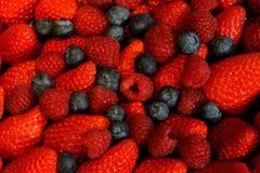 Fresas, arándanos, frambuesas Foto de archivo libre de regalías