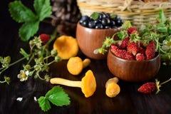 Fresas, arándanos y mízcalos Imagen de archivo libre de regalías