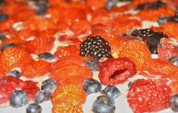Fresas, arándanos, zarzamoras y frambuesas en la crema, que los mades aislaron el fondo Imagen de archivo libre de regalías