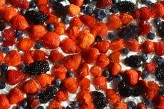 Fresas, arándanos, zarzamoras y frambuesas en la crema, que los mades aislaron el fondo Imagen de archivo