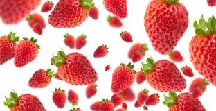 Fresas con efecto sobre el fondo blanco para los fondos imagen de archivo libre de regalías