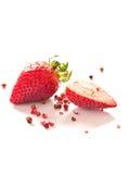 Fresas Fotografía de archivo libre de regalías