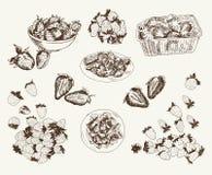 Fresas de jardín Imágenes de archivo libres de regalías