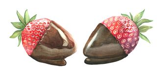 Fresas del postre en chocolate Imágenes de archivo libres de regalías