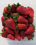 Fresas dulces Fotografía de archivo libre de regalías