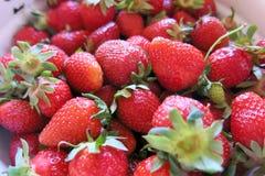 Fresas dulces Foto de archivo