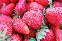 Fresas dulces Imagen de archivo libre de regalías