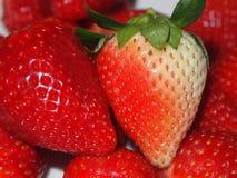 Fresas dulces Fotos de archivo