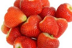Fresas dulces jugosas regordetas maduras frescas Imágenes de archivo libres de regalías