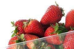 Fresas en blanco Foto de archivo libre de regalías
