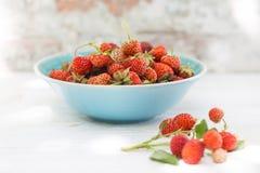 Fresas en cuenco Fotografía de archivo libre de regalías