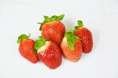Fresas en el fondo blanco Imagenes de archivo