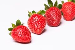 Fresas en el fondo blanco Foto de archivo libre de regalías