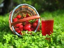 Fresas en la bebida de la cesta y de la fresa imagen de archivo libre de regalías
