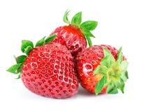 Fresas, en un fondo blanco. Imagen de archivo