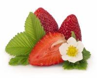 Fresas en un fondo blanco Fotografía de archivo