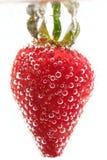 Fresas en un fondo blanco en agua Fotos de archivo libres de regalías