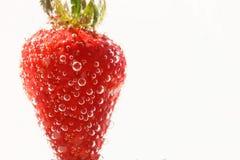 Fresas en un fondo blanco en agua Imagen de archivo