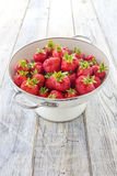 Fresas en un tamiz Fotos de archivo