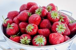 Fresas en un tamiz redondo Imágenes de archivo libres de regalías