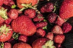 Fresas en una cesta Fotos de archivo libres de regalías