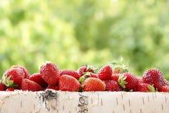 Fresas en una cesta del abedul Fondo verde enmascarado Fotografía de archivo