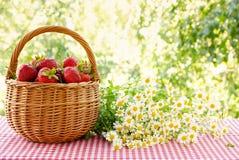 Fresas en una cesta y un ramo de manzanillas Fotos de archivo libres de regalías