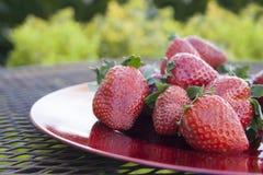 Fresas en una placa roja Foto de archivo libre de regalías