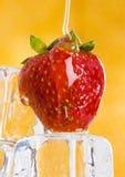 Fresas frías con la miel Imagen de archivo libre de regalías