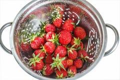 Fresas frescas en un colador Fotografía de archivo
