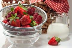 Fresas frescas maduras en una crema del colador y de la leche en un jarro Imagen de archivo