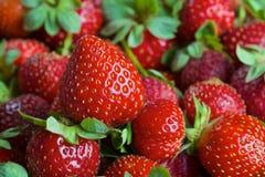 Fresas frescas maduras rojas foto de archivo