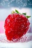 Fresas grandes en un tiro vetrical de las burbujas Fotografía de archivo libre de regalías