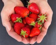 fresas llenas de las manos foto de archivo