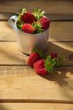 Fresas maduras Fotos de archivo libres de regalías