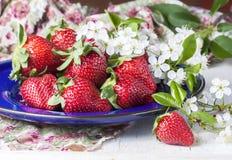 Fresas maduras adornadas con las cerezas de las flores frescas, en la madera Foto de archivo