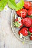 Fresas maduras dulces perfectas en fondo de madera Foto de archivo libre de regalías
