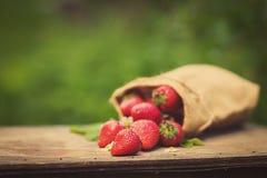 Fresas maduras dulces perfectas en fondo de madera Imágenes de archivo libres de regalías