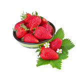Fresas maduras en cuenco verde Imagenes de archivo