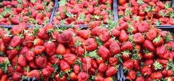 Fresas maduras frescas en un soporte del mercado Imagenes de archivo