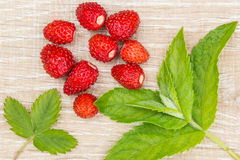 Fresas maduras y hojas de menta que mienten en una tabla Fotografía de archivo libre de regalías