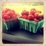Fresas orgánicas Imagen de archivo libre de regalías