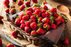 Fresas orgánicas rojas crudas Foto de archivo libre de regalías