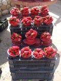 Fresas para la venta Fotografía de archivo libre de regalías