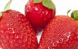 Fresas perfectas Foto de archivo libre de regalías