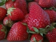 Fresas rojas agradables Fotos de archivo